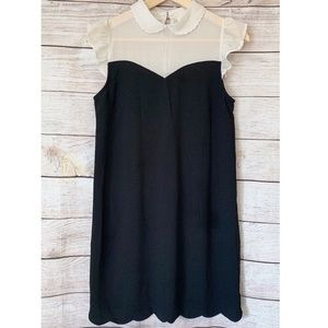 Adorable flutter sleeve cream and black dress